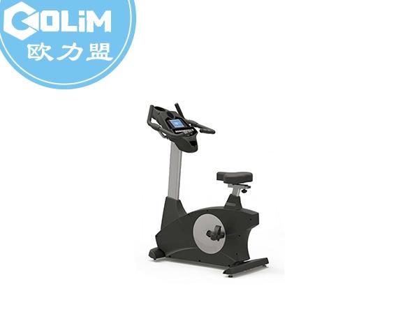 立式健身車